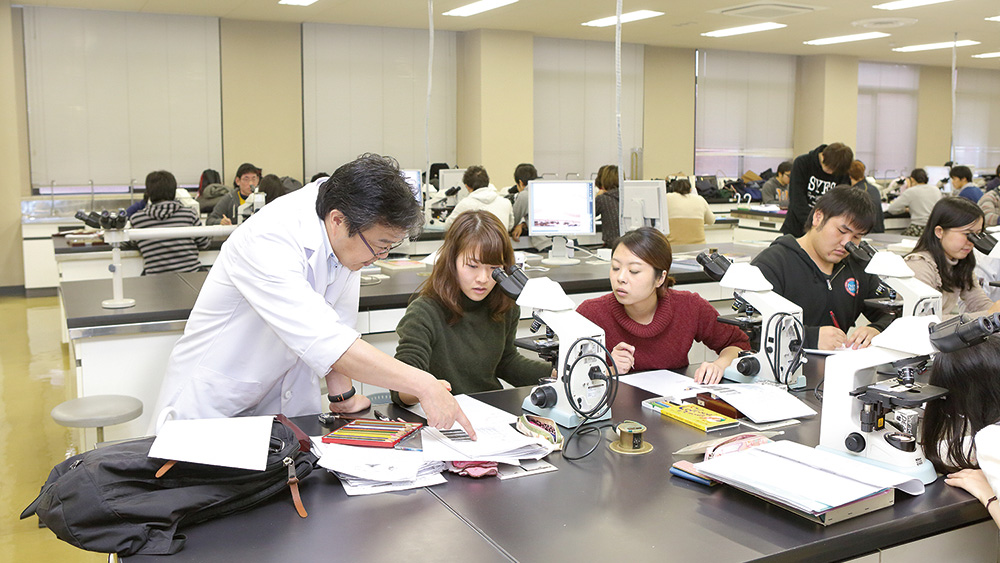 University of Occupational and Environmental Health , Japan